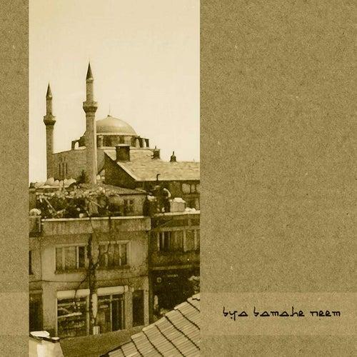 Bya Bamahe Neem by Forgotten Silence