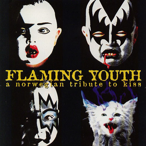 Flaming Youth - A Norwegian Tribute to Kiss de Various Artists