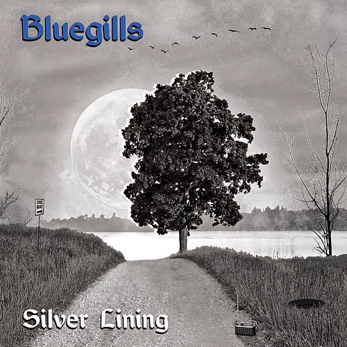 Silver Lining by The Bluegills
