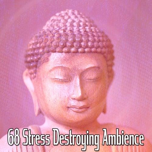 68 Stress Destroying Ambience de Meditación Música Ambiente