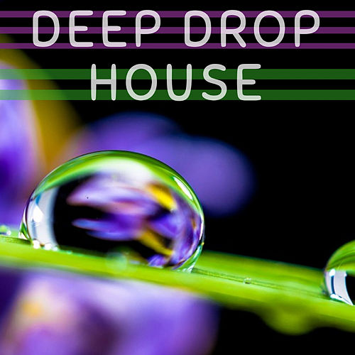 Deep Drop House von Dj Regard