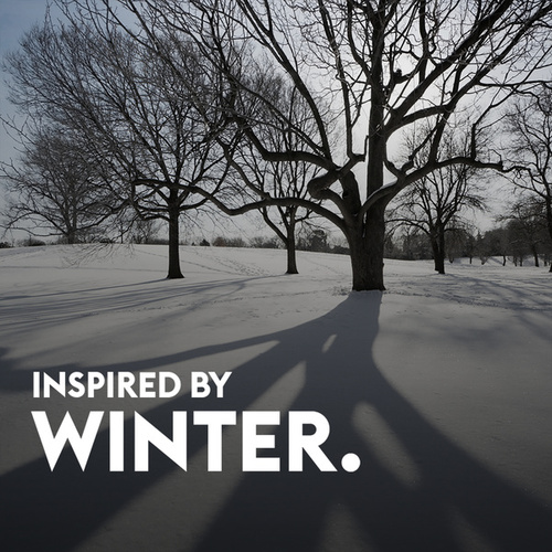 Inspired By Winter by Various Artists