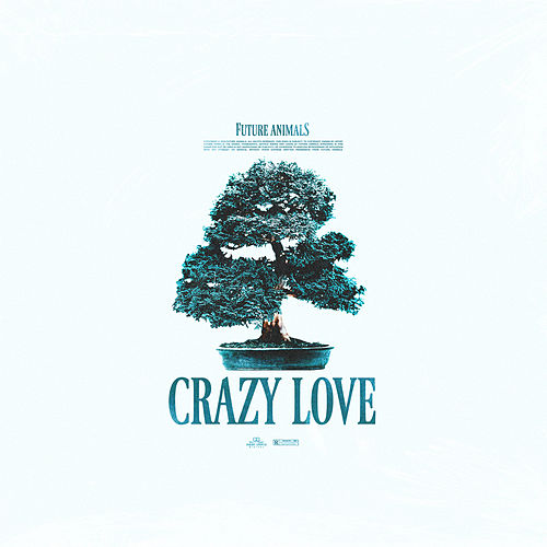 Crazy Love by Future Animals