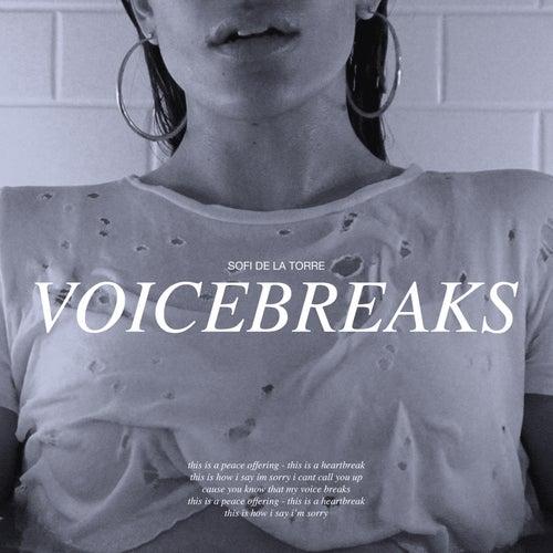 Voicebreaks de Sofi de la Torre
