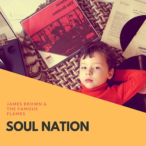 Soul Nation by James Brown