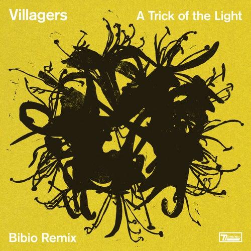 A Trick of the Light (Bibio Remix) de Villagers
