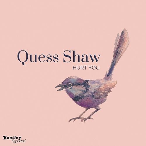 Hurt You by Quess Shaw