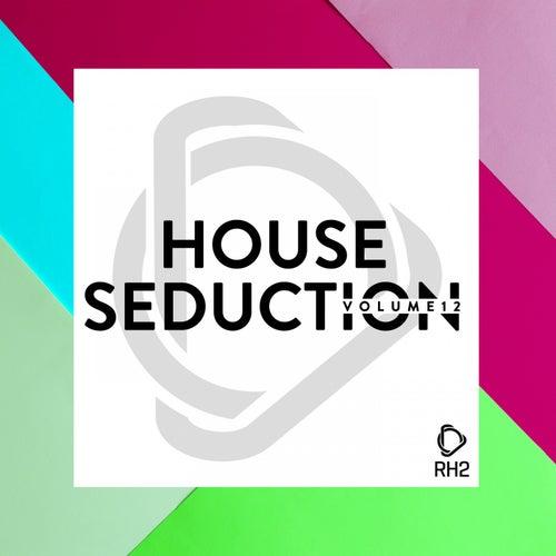 House Seduction, Vol. 12 de Various Artists