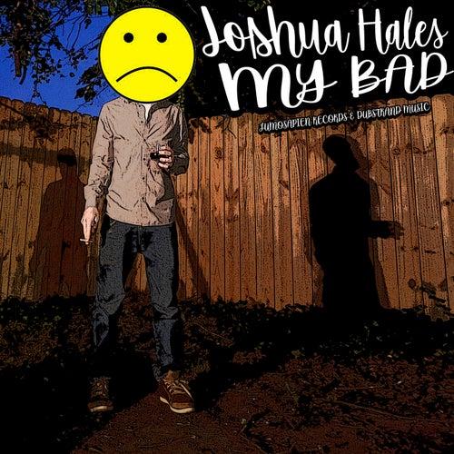 My Bad von Joshua Hales