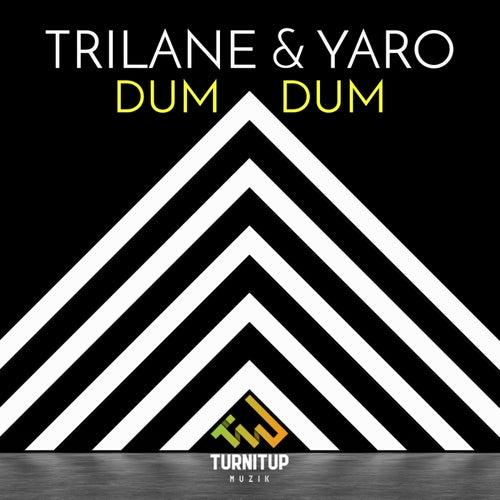 Dum Dum by Trilane