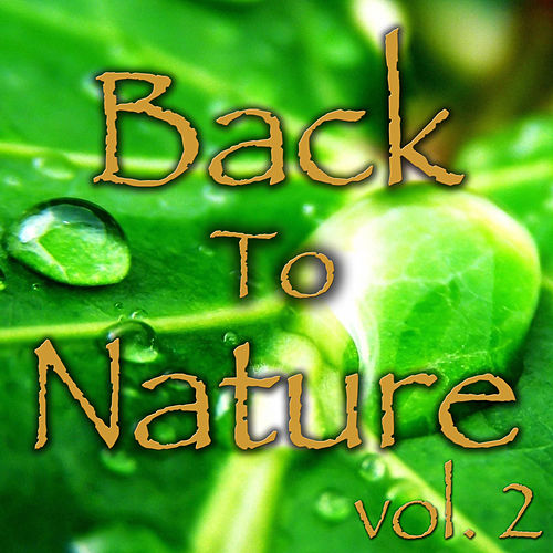 Back To Nature, Vol. 2 by Spirit