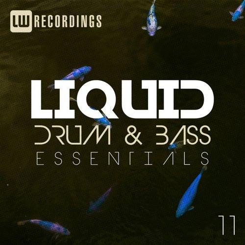 Liquid Drum & Bass Essentials, Vol. 11 - EP de Various Artists