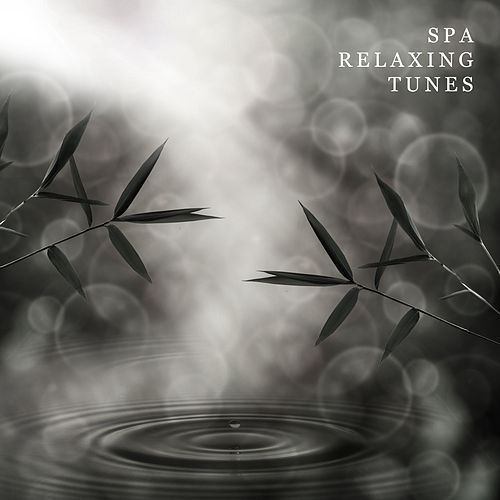 Spa Relaxing Tunes by Relaxing Spa Music