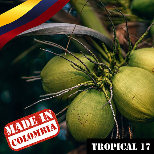 Made In Colombia / Tropical / 17 de Various Artists