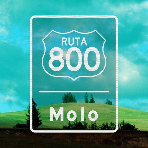 Ruta 800 by Molo