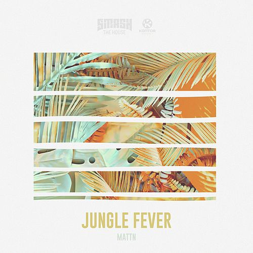 Jungle Fever von MATTN