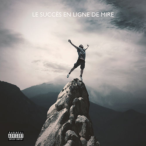 Le succès en ligne de mire by Various Artists