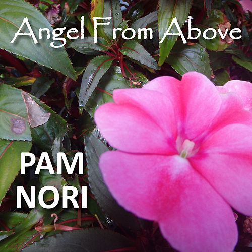 Angel from Above by Pam Nori