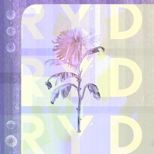 Don't von Ryd