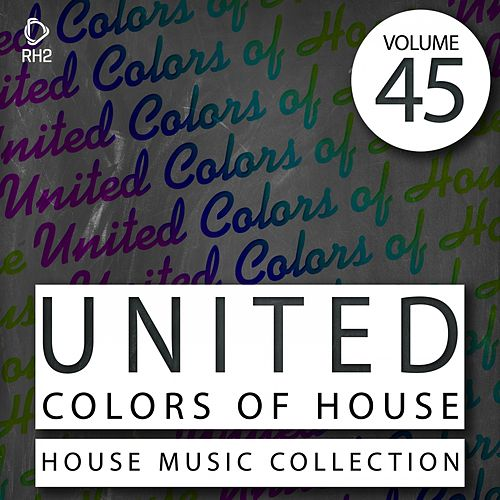 United Colors of House, Vol. 45 de Various Artists