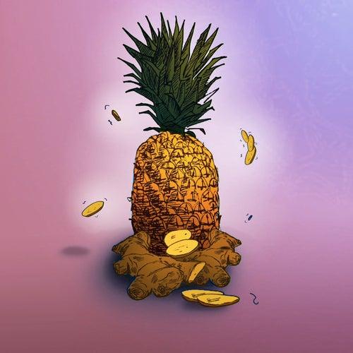 Pine & Ginger [Remix](feat. Popcaan) von Amindi K. Fro$t