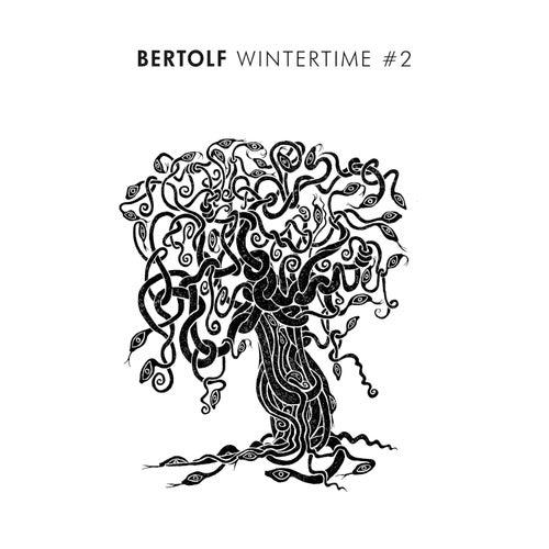 Wintertime #2 by Bertolf