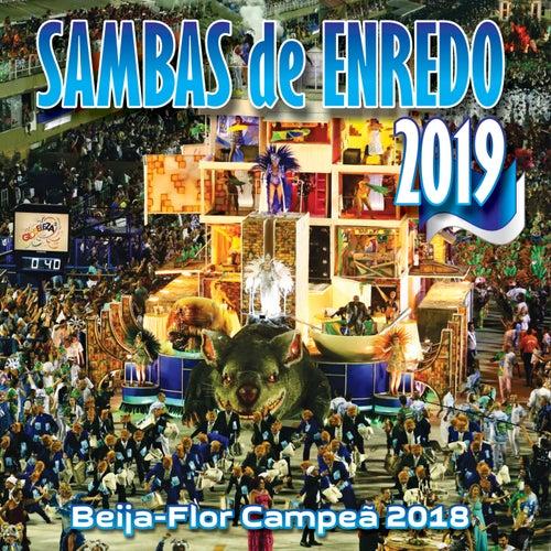 Sambas De Enredo Das Escolas De Samba 2019 de Various Artists