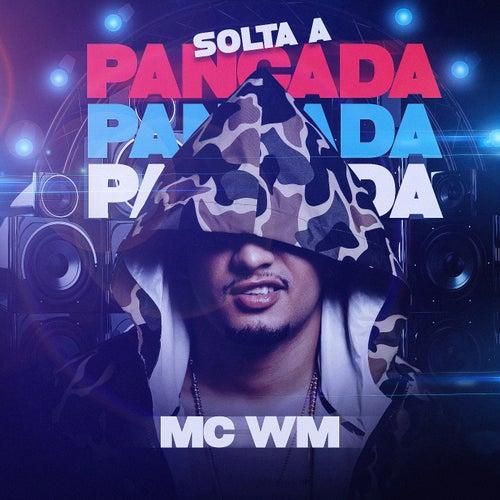 Solta a pancada de MC Wm