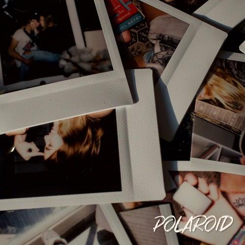 Polaroid de Anthrés