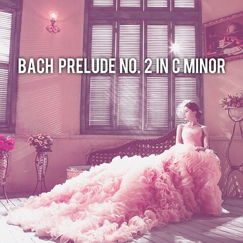 Bach: Prelude No. 2 in C Minor, BWV 846 de Abby Mettry