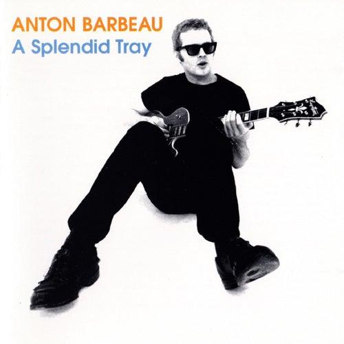 A Splendid Tray by Anton Barbeau