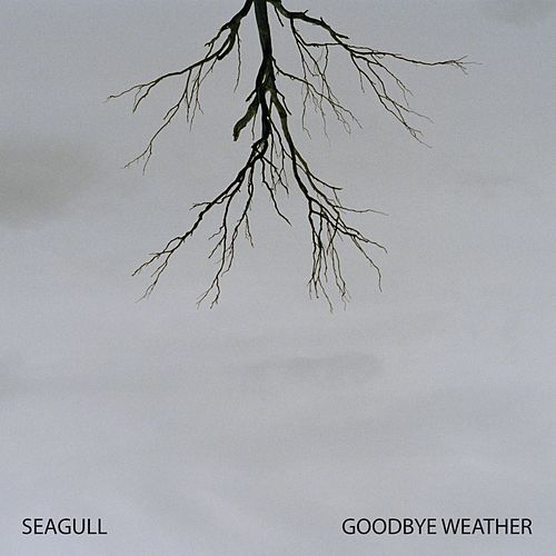 Goodbye Weather de Seagull