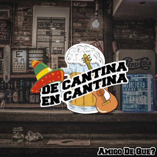De Cantina En Cantina / Amigo De Que? by Various Artists