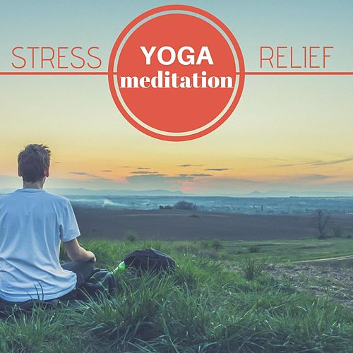 Stress Relief – Yoga & Mindfulness Meditation for Relaxation, Calm Mind, Healing Music Therapy for Better Sleep von Yoga