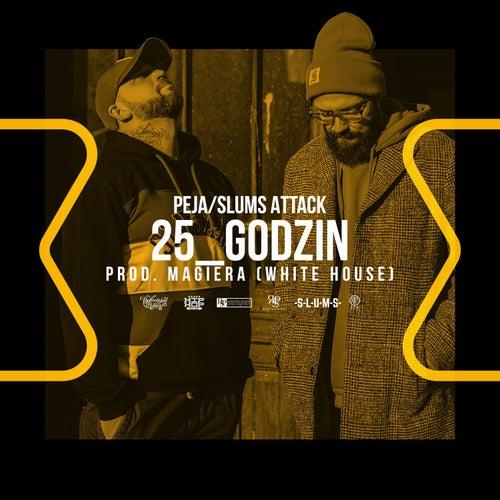 25_Godzin by Peja