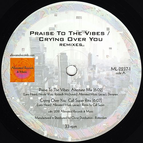 Praise to the Vibes / Crying Over You Remixes de Mr. Fingers