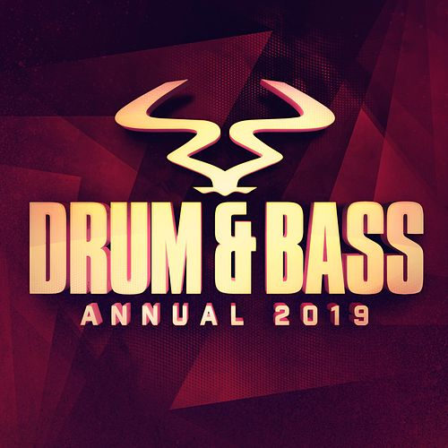 RAM Drum & Bass Annual 2019 by Various Artists