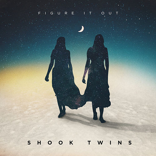 Figure It Out by Shook Twins