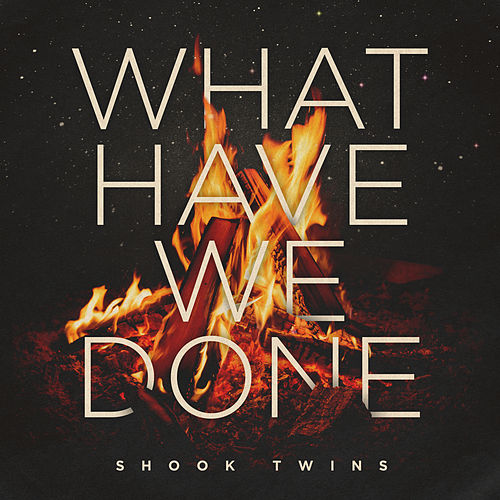 What Have We Done by Shook Twins