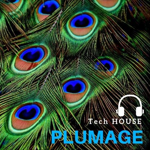 Tech House Plumage von Dj Regard
