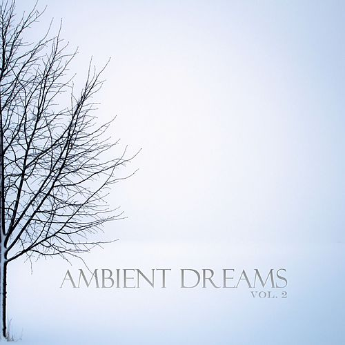 Ambient Dreams, Vol. 2 by Various Artists