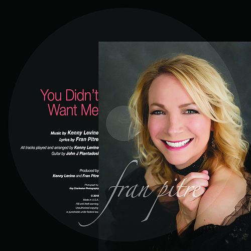You Didn't Want Me by Fran Pitre