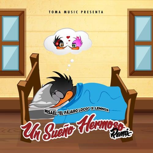 Un Sueño Hermoso (Remix) di Misael