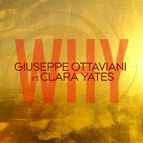 Why von Giuseppe Ottaviani