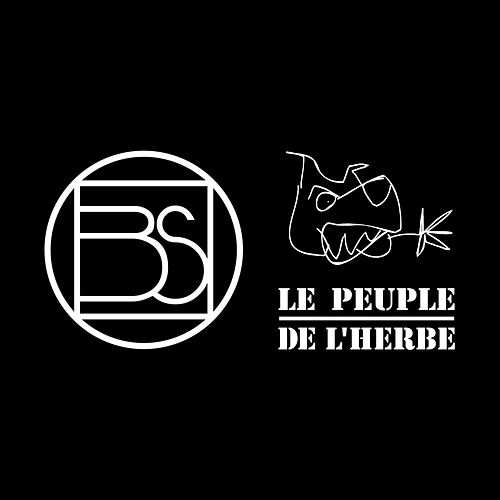 Abuse (Remix Le Peuple de l'Herbe) von Be4t Slicer