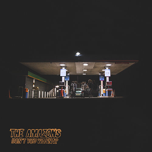 Don't You Wanna - EP by The Amazons