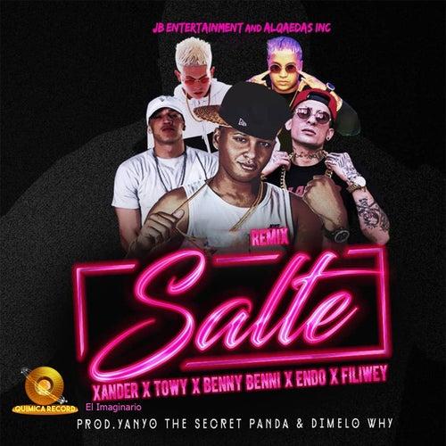 Salte (Remix) de Xander el Imaginario