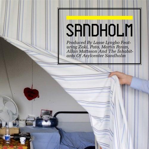 Sandholm de Lasse Lyngbo