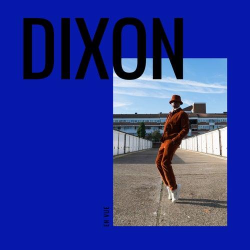 En vue de Dixon