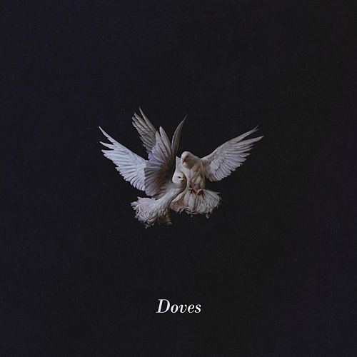 Doves by Nevaeh